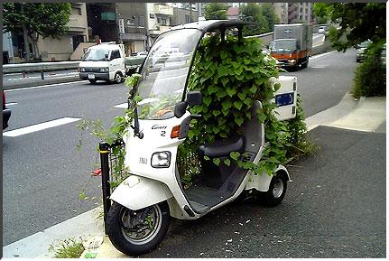 bike_tsuta.jpg