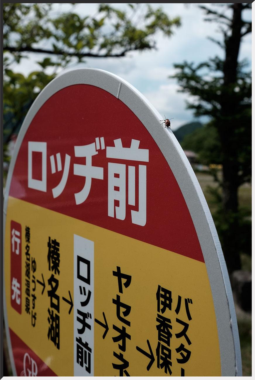 harunako_150530_04.jpg