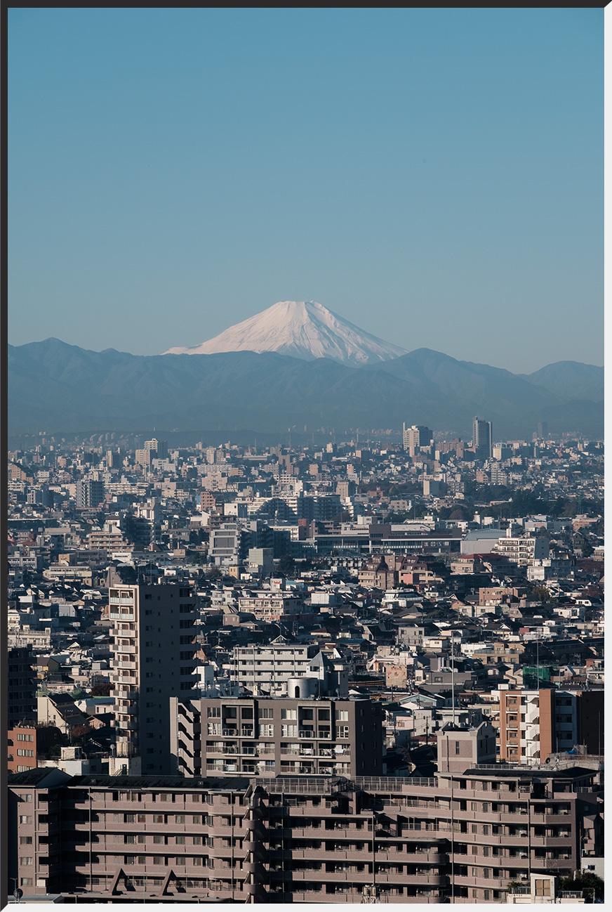 kikuchi_151127_05.jpg