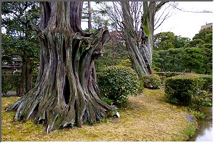 kyoto_kikokutei_02.jpg