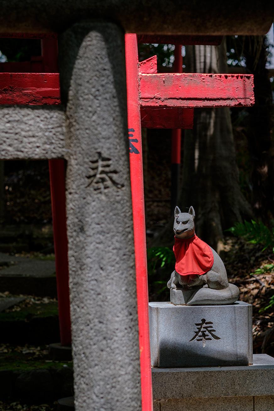 ryuho_160604_04.jpg