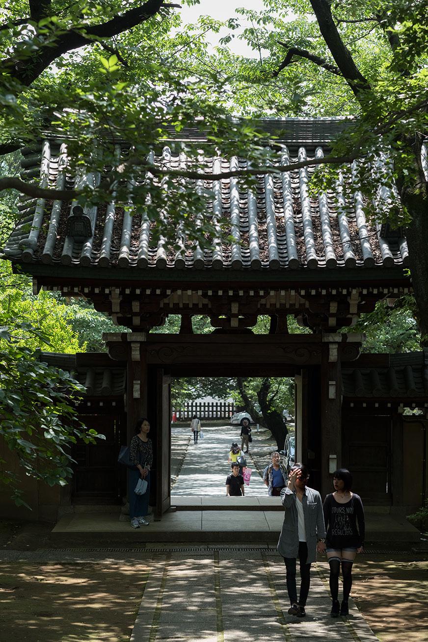 ryuho_160604_06.jpg