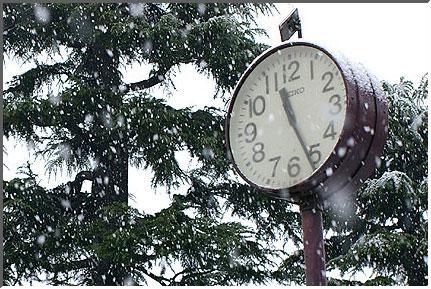 snow_in_tokyo_041229_01.jpg