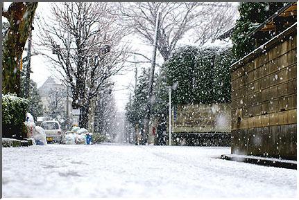 snow_in_tokyo_041229_03.jpg