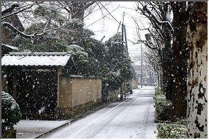 snow_in_tokyo_041229_04.jpg