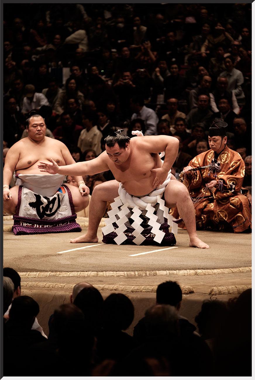 sumo_160114_05.jpg