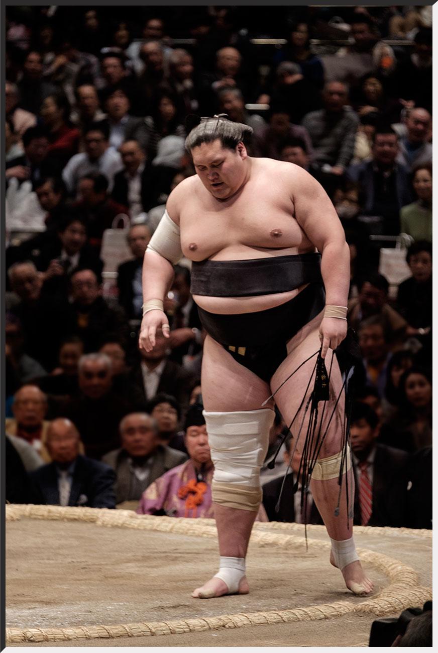 sumo_160114_08.jpg