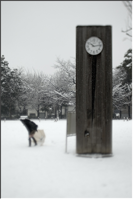 tilt_snow_080203_03.jpg