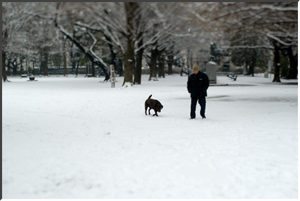 tilt_snow_080203.jpg