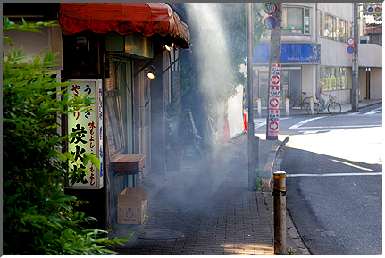 yakitori_usagi.jpg