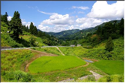 yamakoshimura_07.jpg