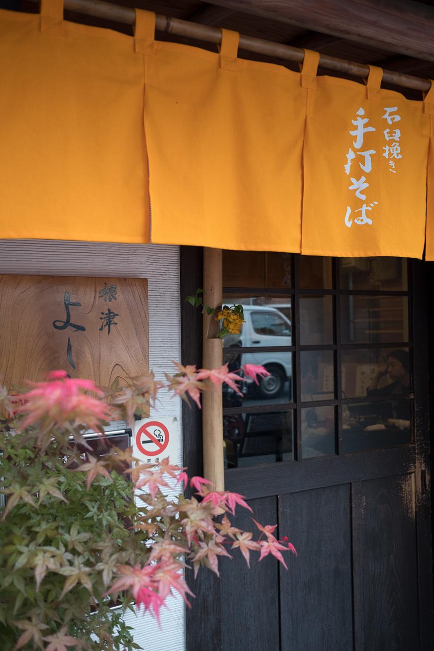 yoshibo_170501_05.jpg