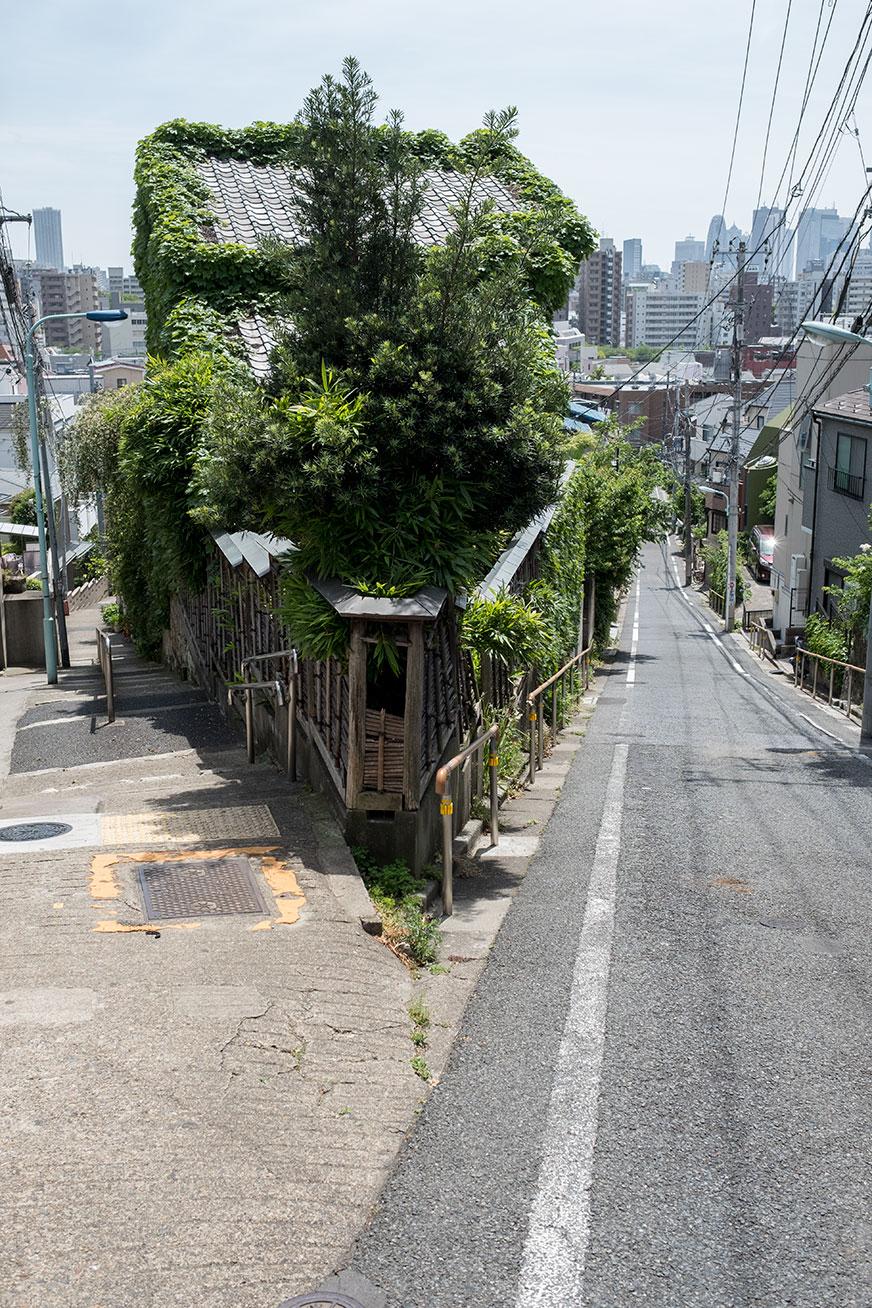 zoshigaya_160508_02.jpg