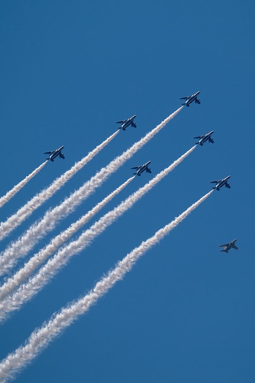 blueimpulse_icydog_200529_01.jpg