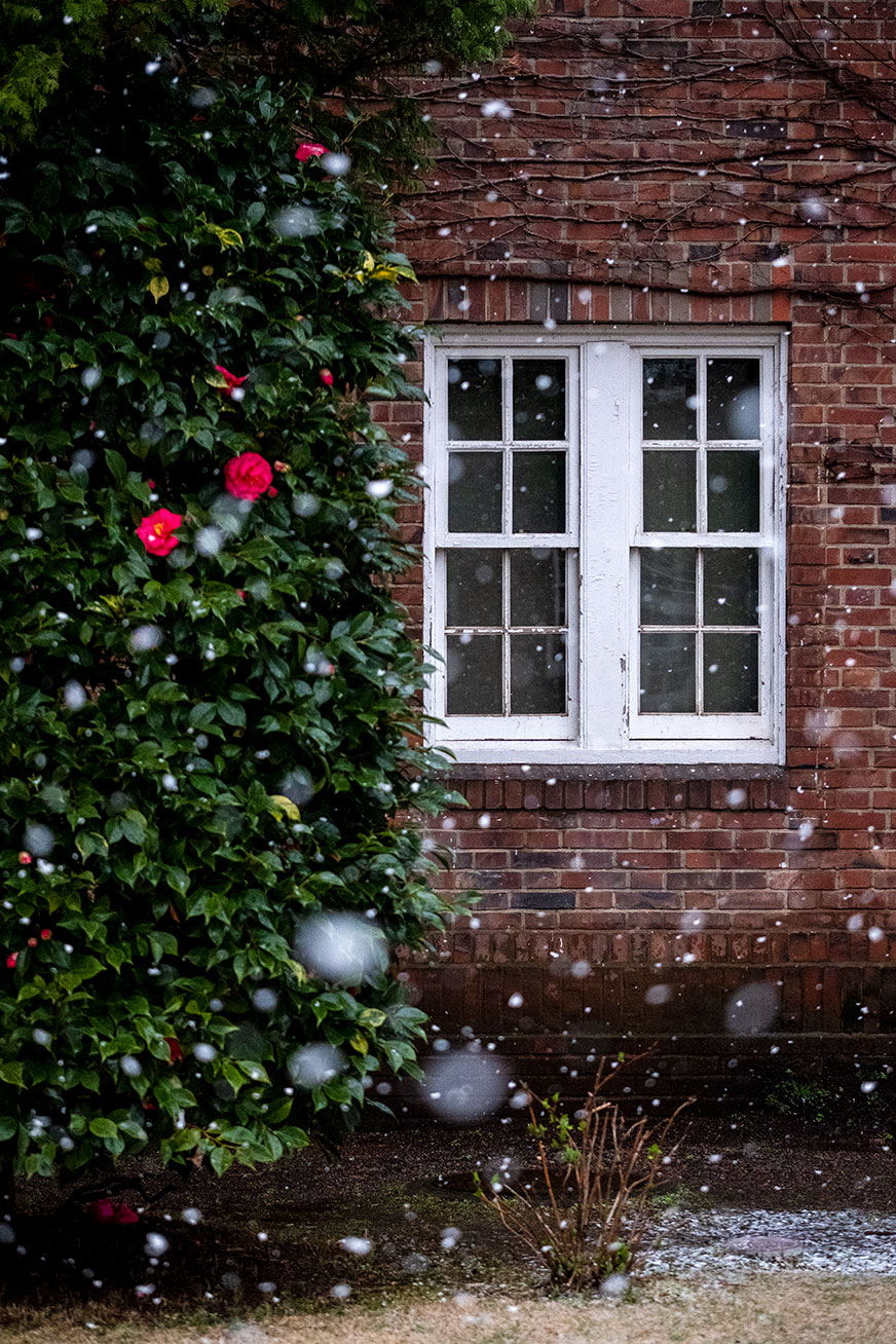 snowing_200314_02.jpg